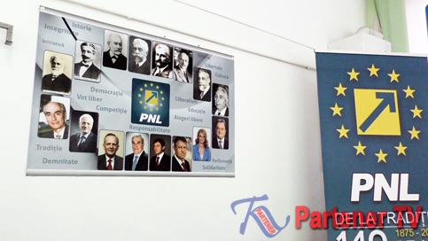 pnl-dambovita